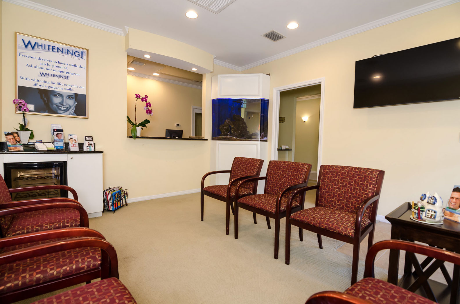 Dentist-in-Clearwater-1