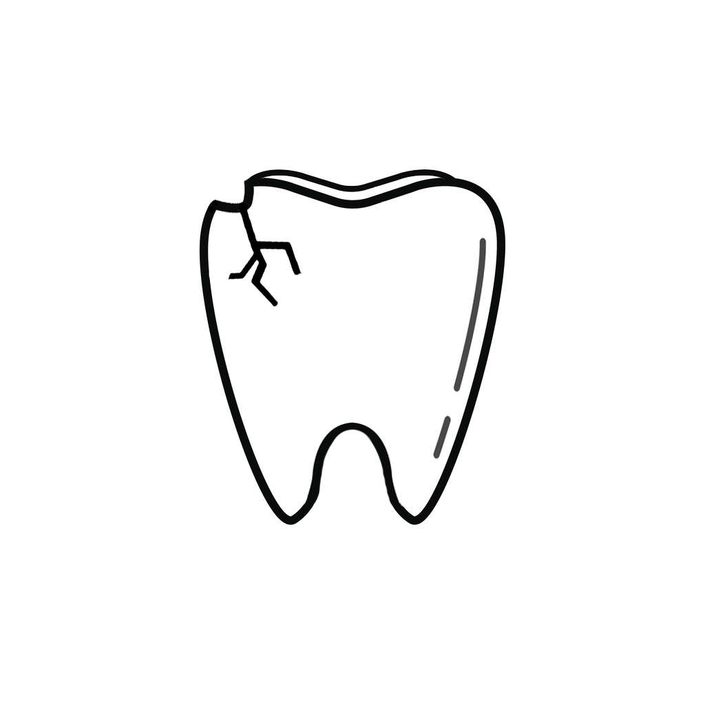 dentist in clearwater i chipped a tooth what can i do